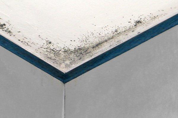 Umidità da condensa in casa